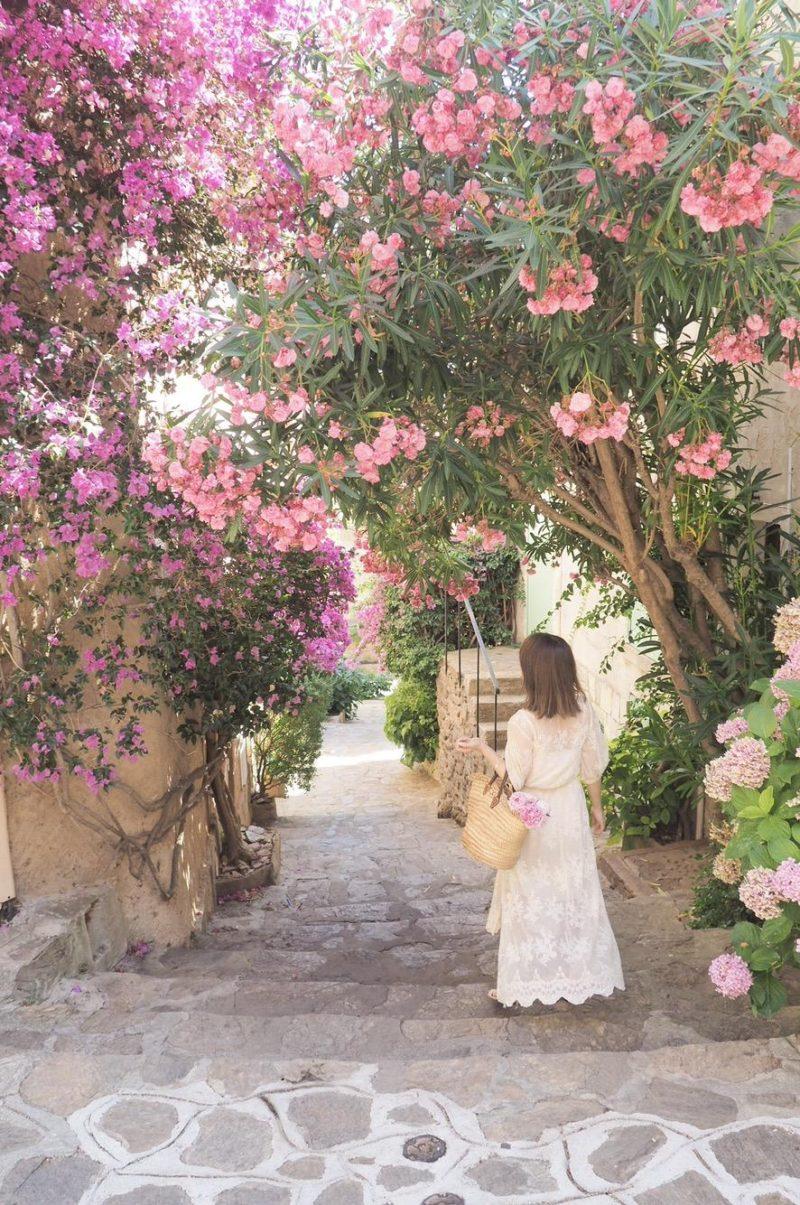 Bormes-les-Mimosas 花のある暮らし