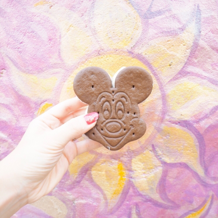 WDWの可愛くて美味しいアイスたち。- Walt Disney World in Florida –