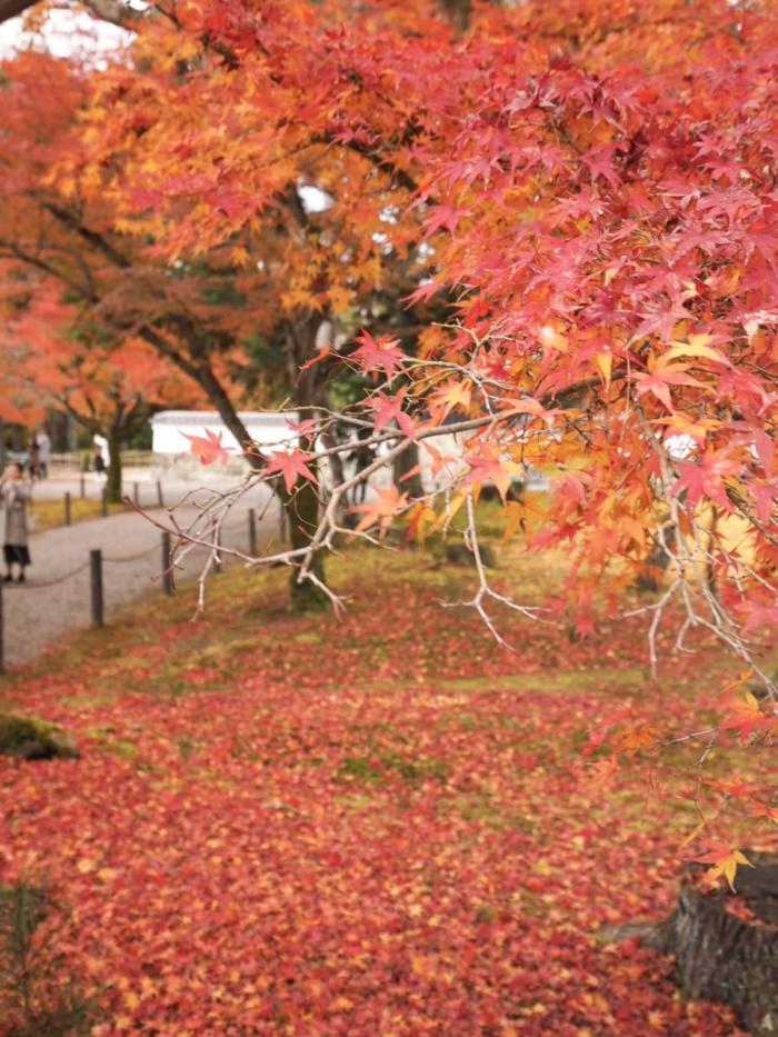 秋色の南禅寺。