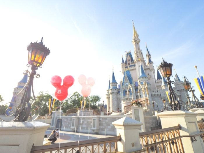Basic Information – Walt Disney World in Florida –