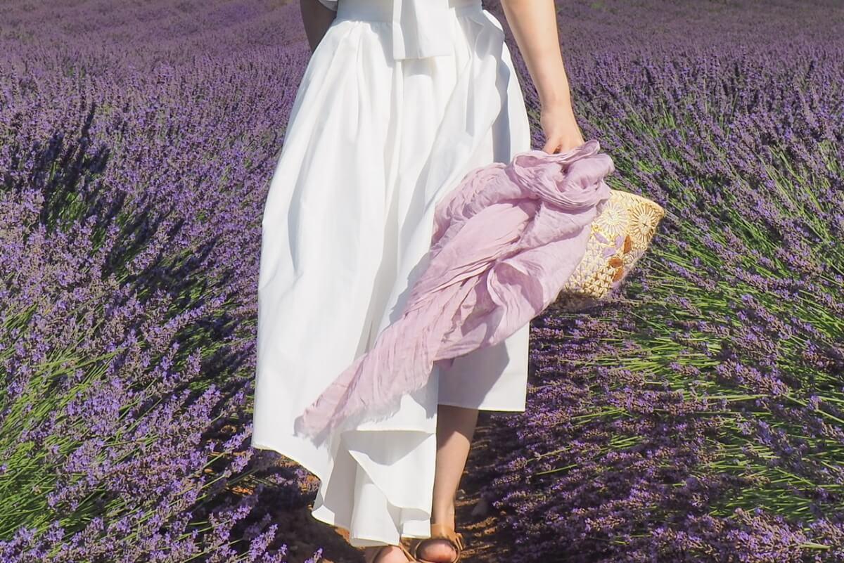 南フランス ラベンダー畑